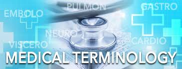Medical Terminology Image