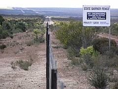 Rabbit Proof Fence image