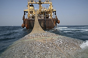 Factory Ship Trawler image