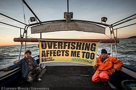 Effects of Overfishing image