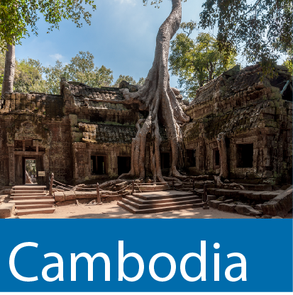 Cambodia Collections