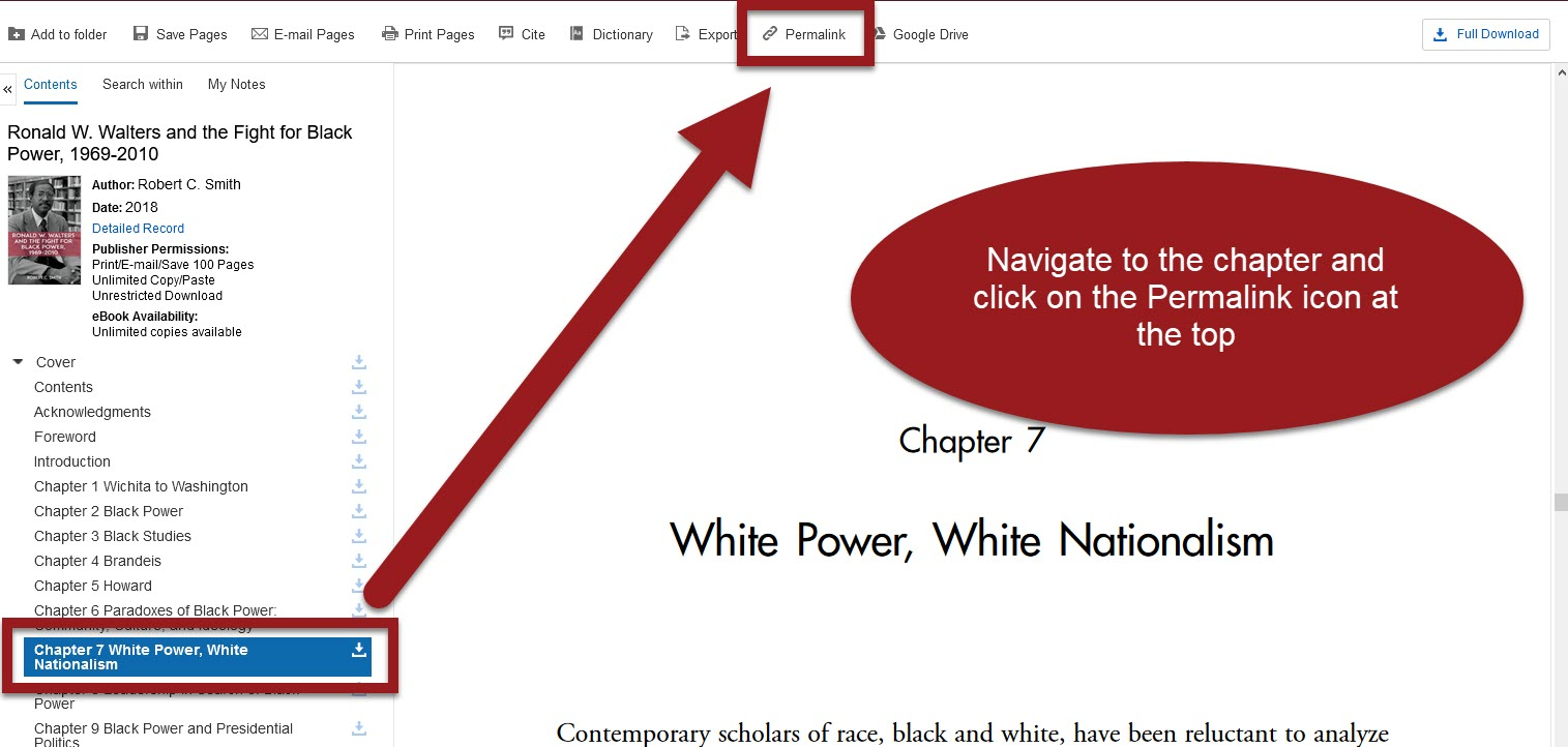 eBook view of a chapter with Permalink link highlighted