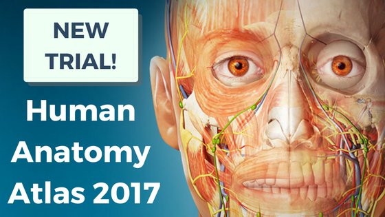 Human Anatomy Atlas Trial