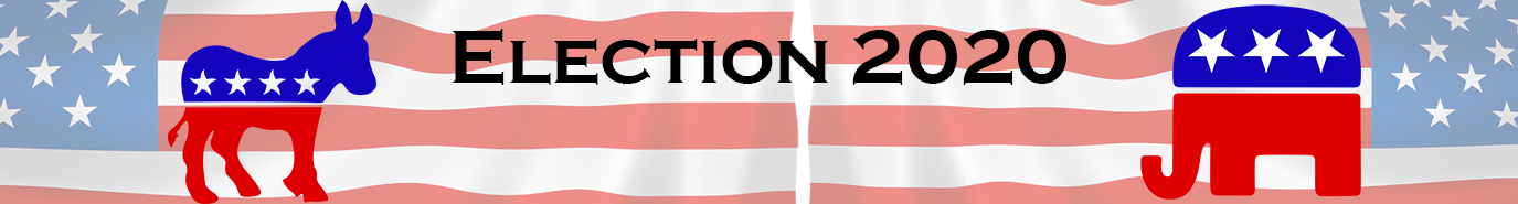 Image: Election 2020 banner