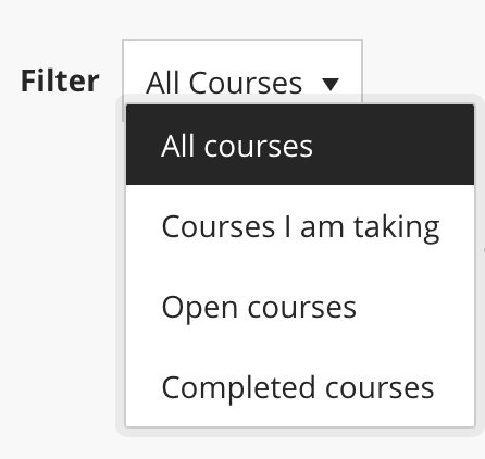 Course filter options