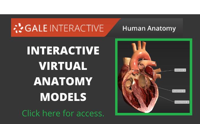 Gale Virtual Anatomy