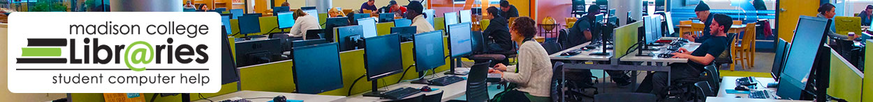 Picture of students in library computer lab