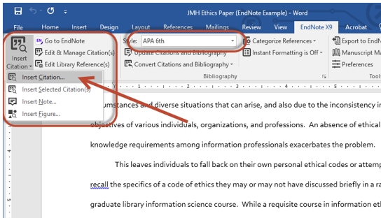 View of Endnote in MS Word