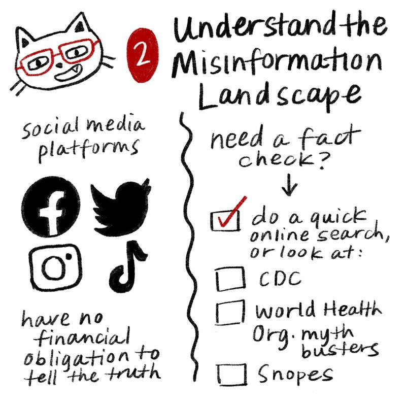 2 understand the misinformation landscape