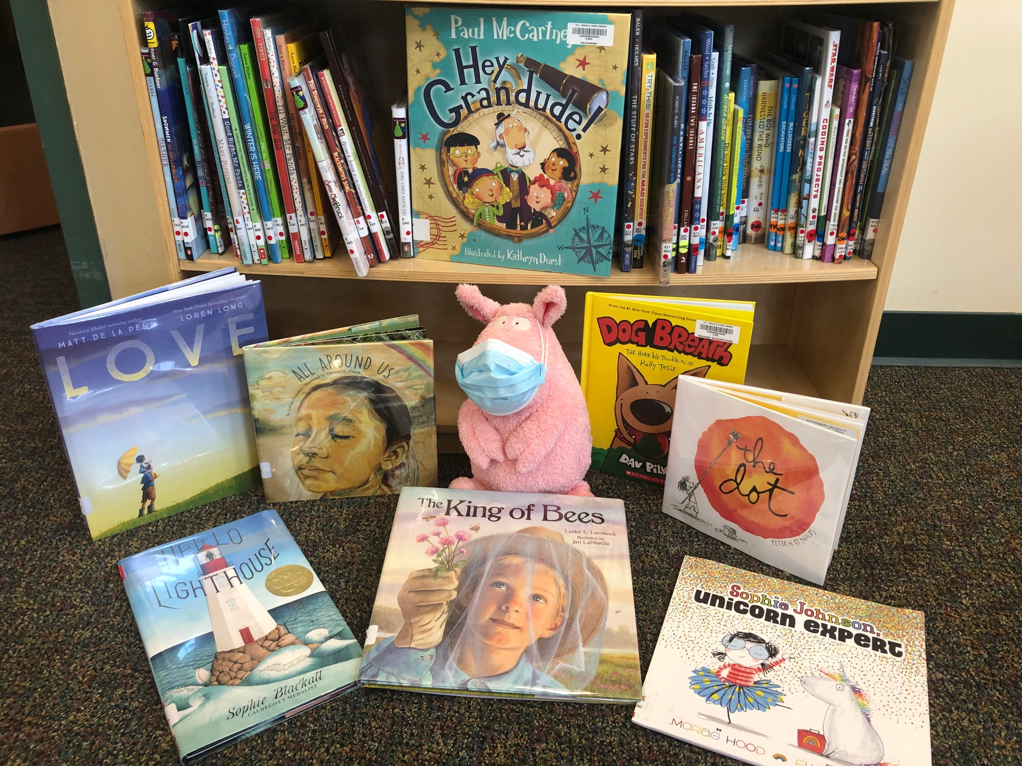 Pig offers picture books for check out