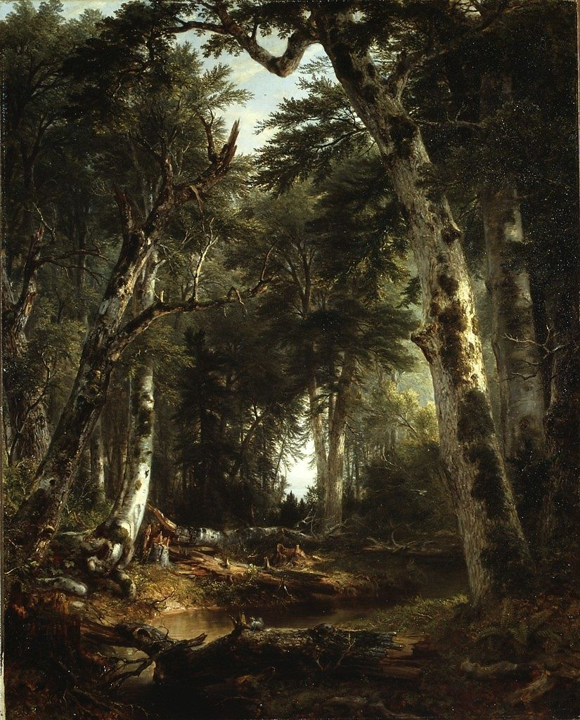 In the Woods by Asher Brown Durand