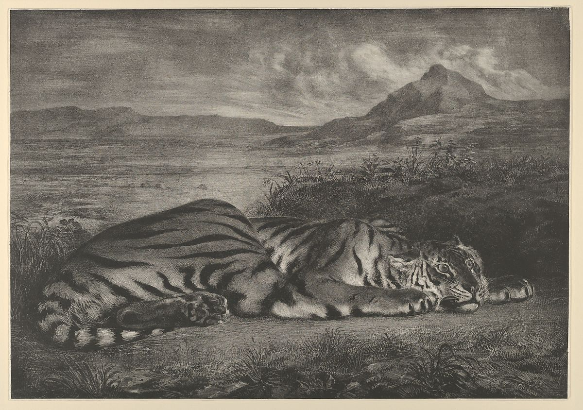 Royal Tiger by Eugène Delacroix