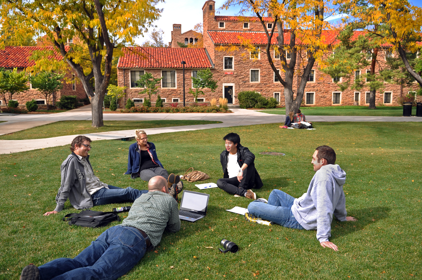 Five students study on the grass near the dorms