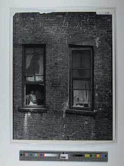 Magnum New York building windows