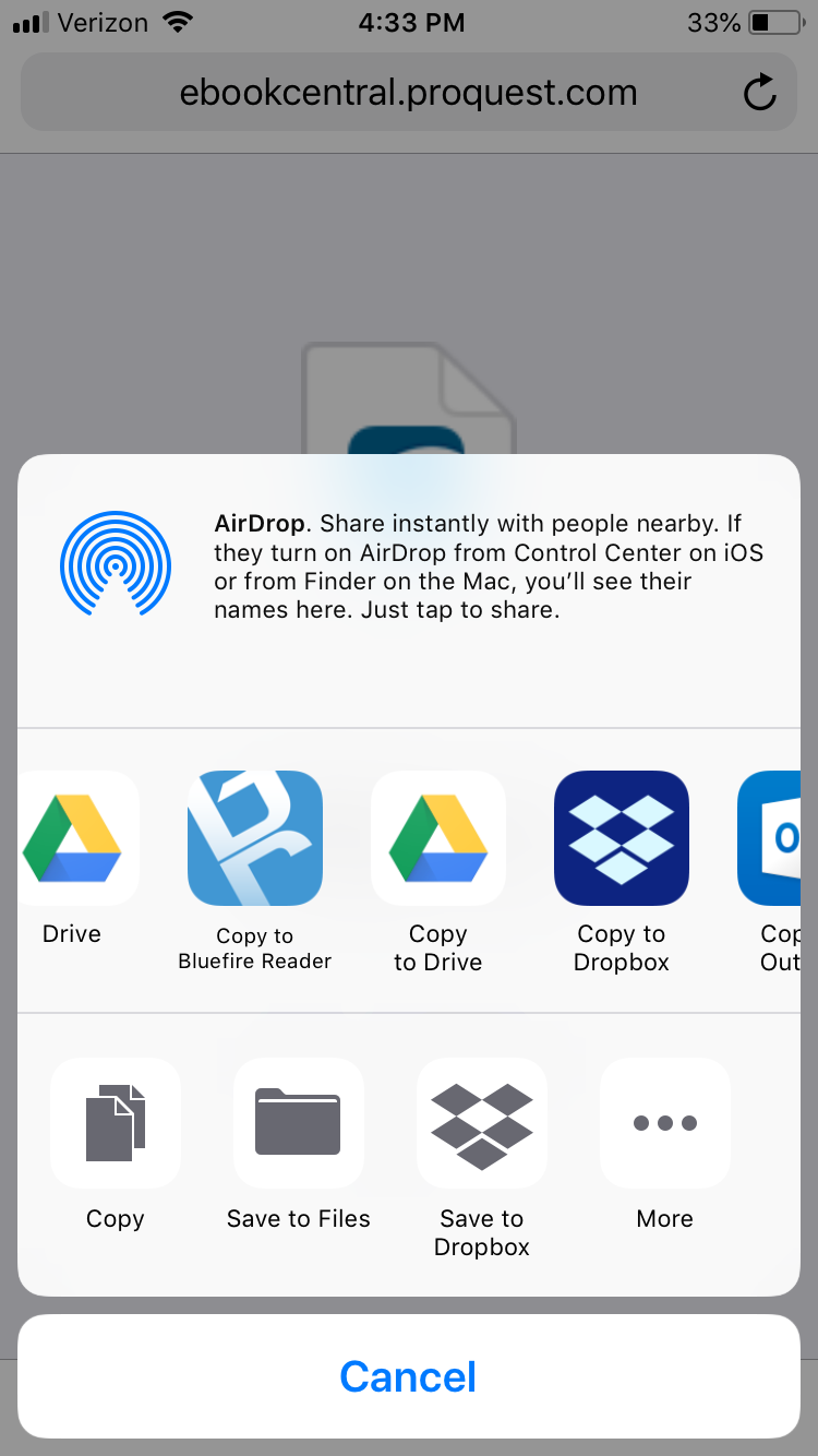 iOS menu showing several options including Copy to Bluefire Reader