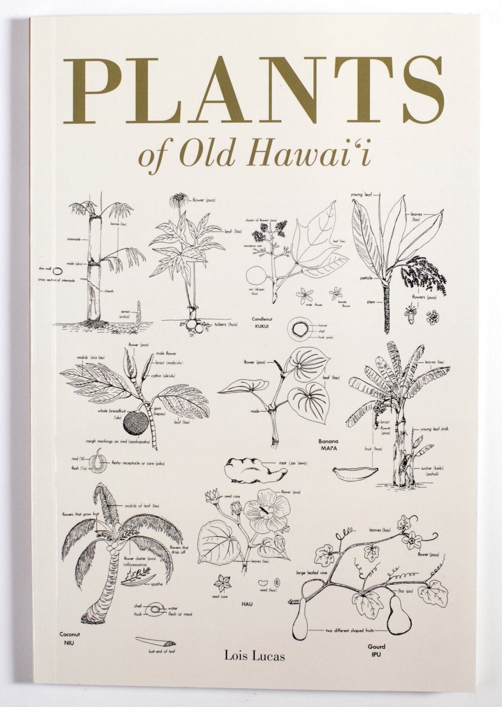 Plants of Old Hawaiʻi - Lois Lucas