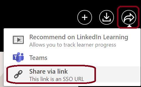 get SSO link
