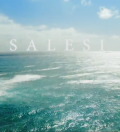 cover art for the film Salesi