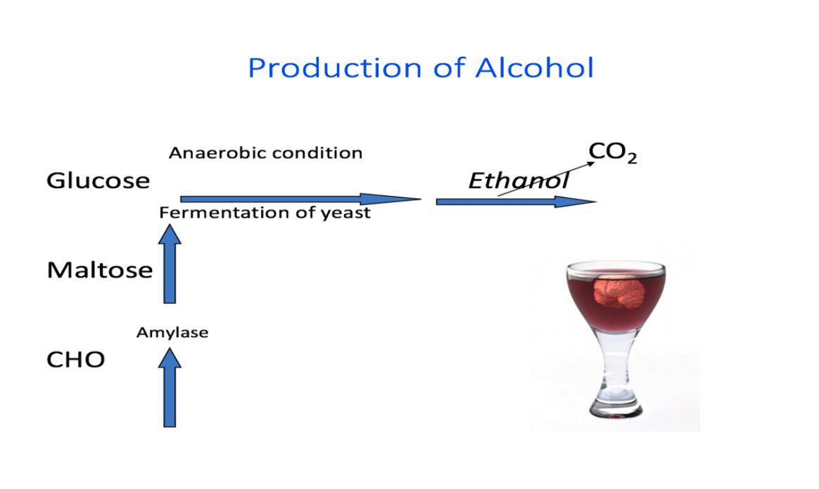 image showing chemicals that create alcohol not understood by clerk inputting information