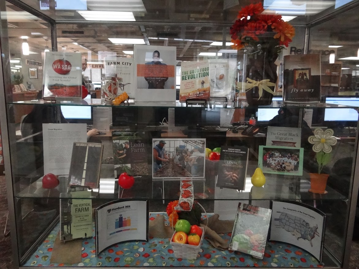 photo of the library display