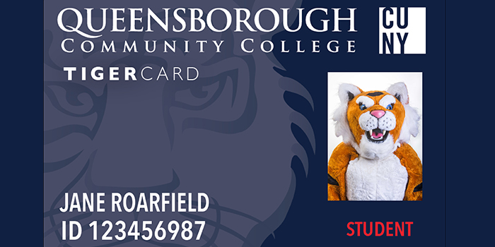 front of tigercard