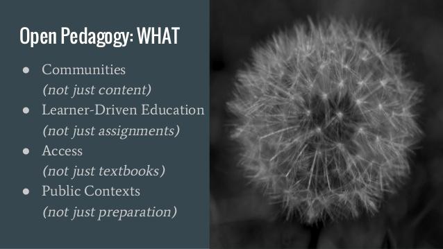 Open Pedagogy: What