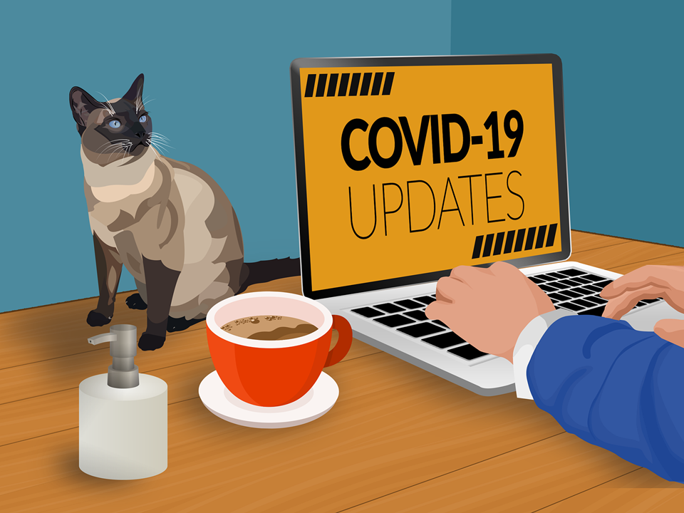 Announcement poster COVID 19 updates