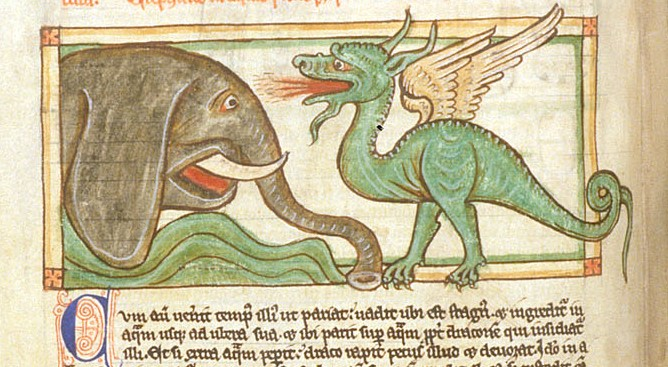 An elephant and a dragon