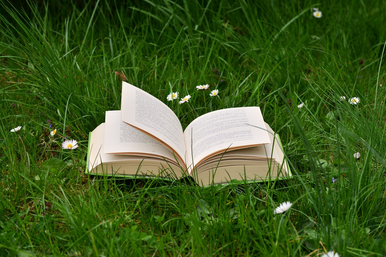 Book in a field