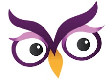 Excelsior University Online Writing Lab owl logo