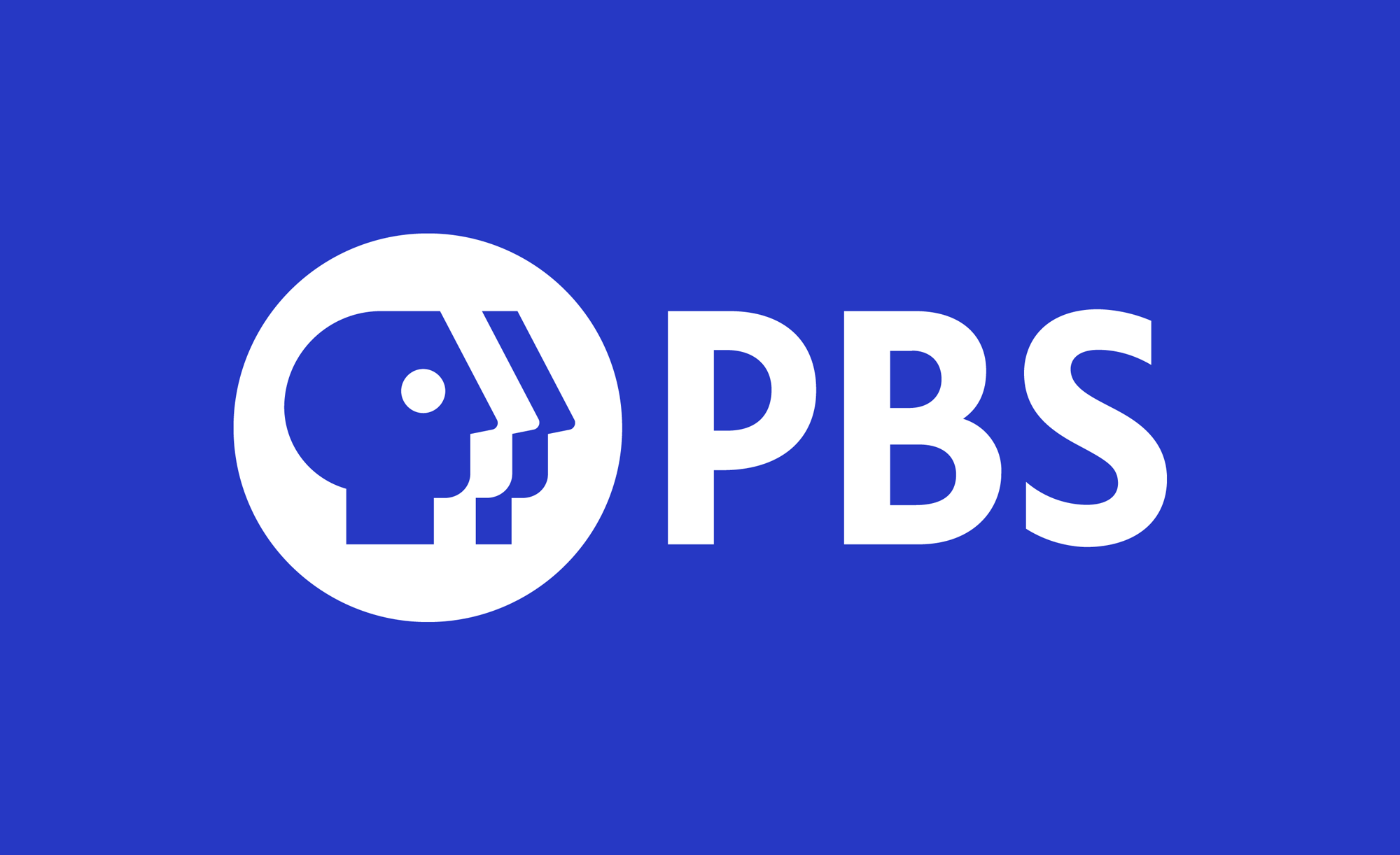 PBS: Public Broadcasting Station Logo