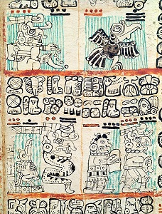 Detail of Mayan codex