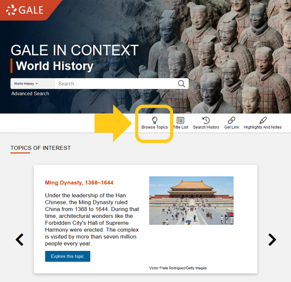 World History (Gale in Context) Homepage