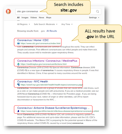 Internet search results with .gov websites