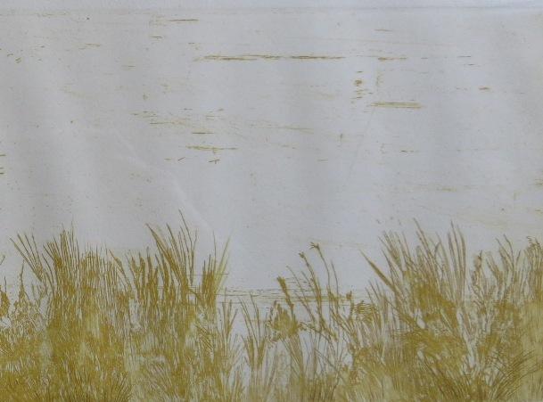 Schwartz etching Meadow 1964