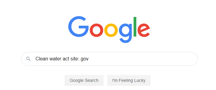 """Screenshot of google home screen with """"Clean water act site:.gov"""" writen in the search bar."""