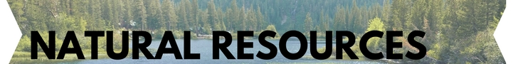 lake and trees, natural resources text