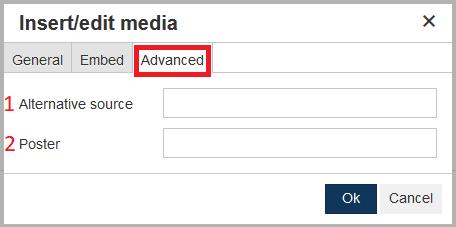 insert edit media advanced tab