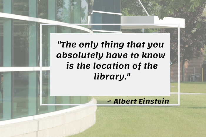 albert einstein library quote