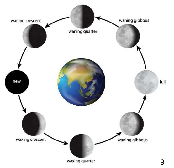 lunar phases illustration