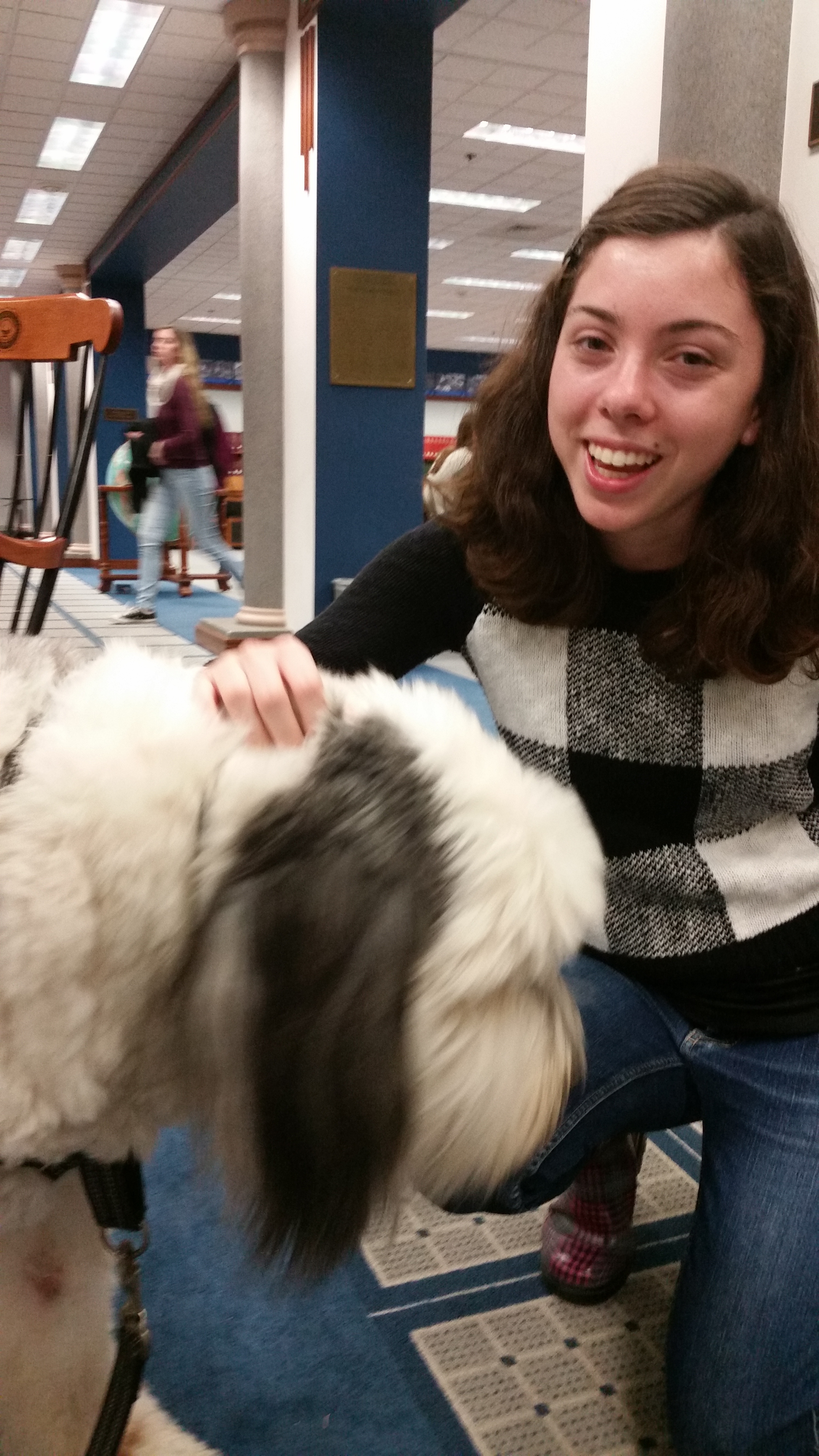 KPETS Therapy Dogs