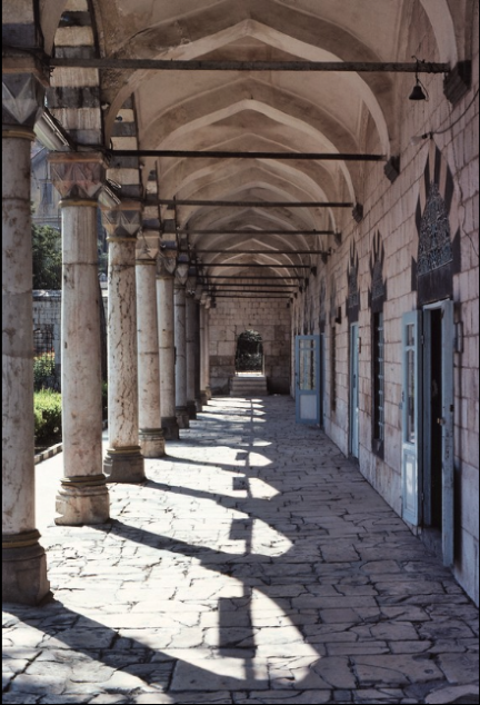 photograph of Suleyman I Complex in Damascus, Syria from ArtStor