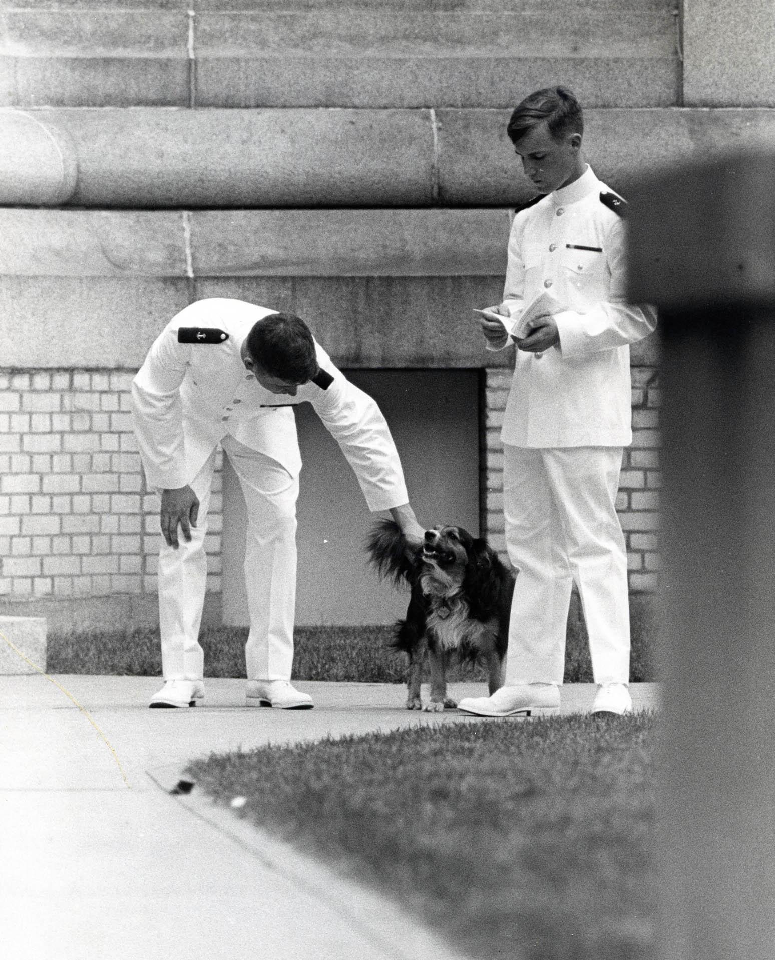Dodo the dog with midshipmen