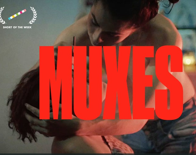Muxes documentary