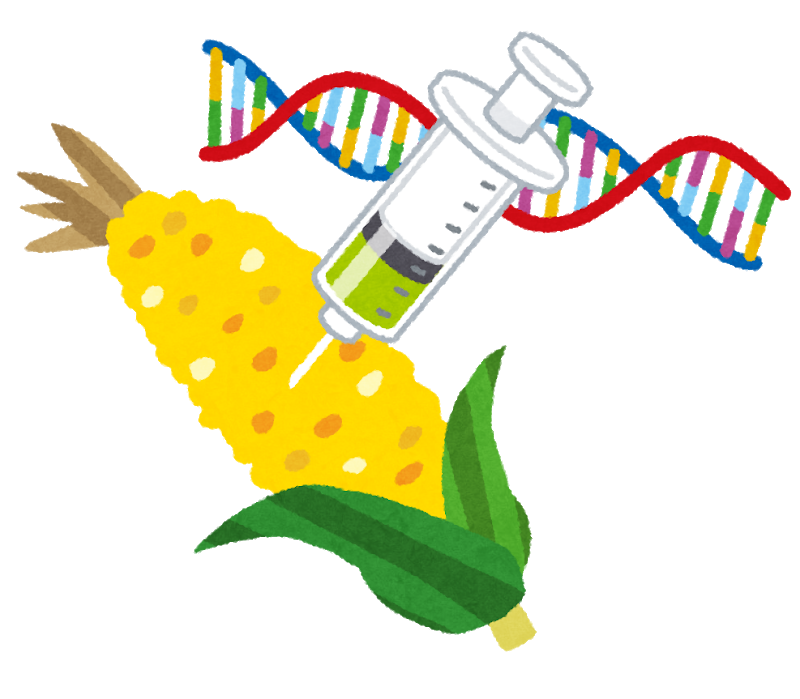 DNA and GMO foods
