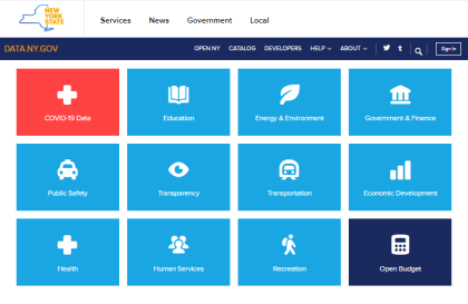 screenshot of data.ny.gov website