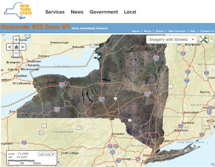 screenshot of NYS Orthos website