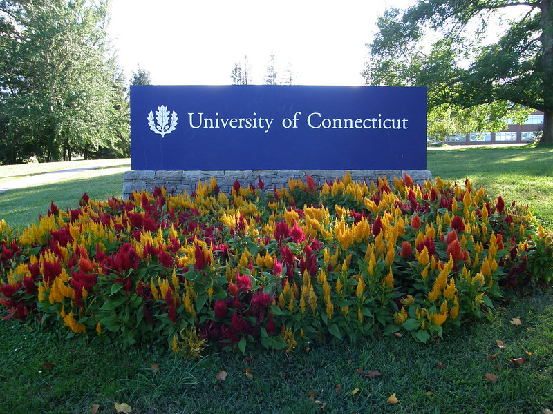 University of Connecticut Sign with blooming flowers