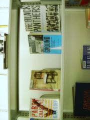 Display Book Shelves