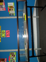 Young Adult books in the display case wide view